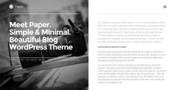 professional blog wordpress theme